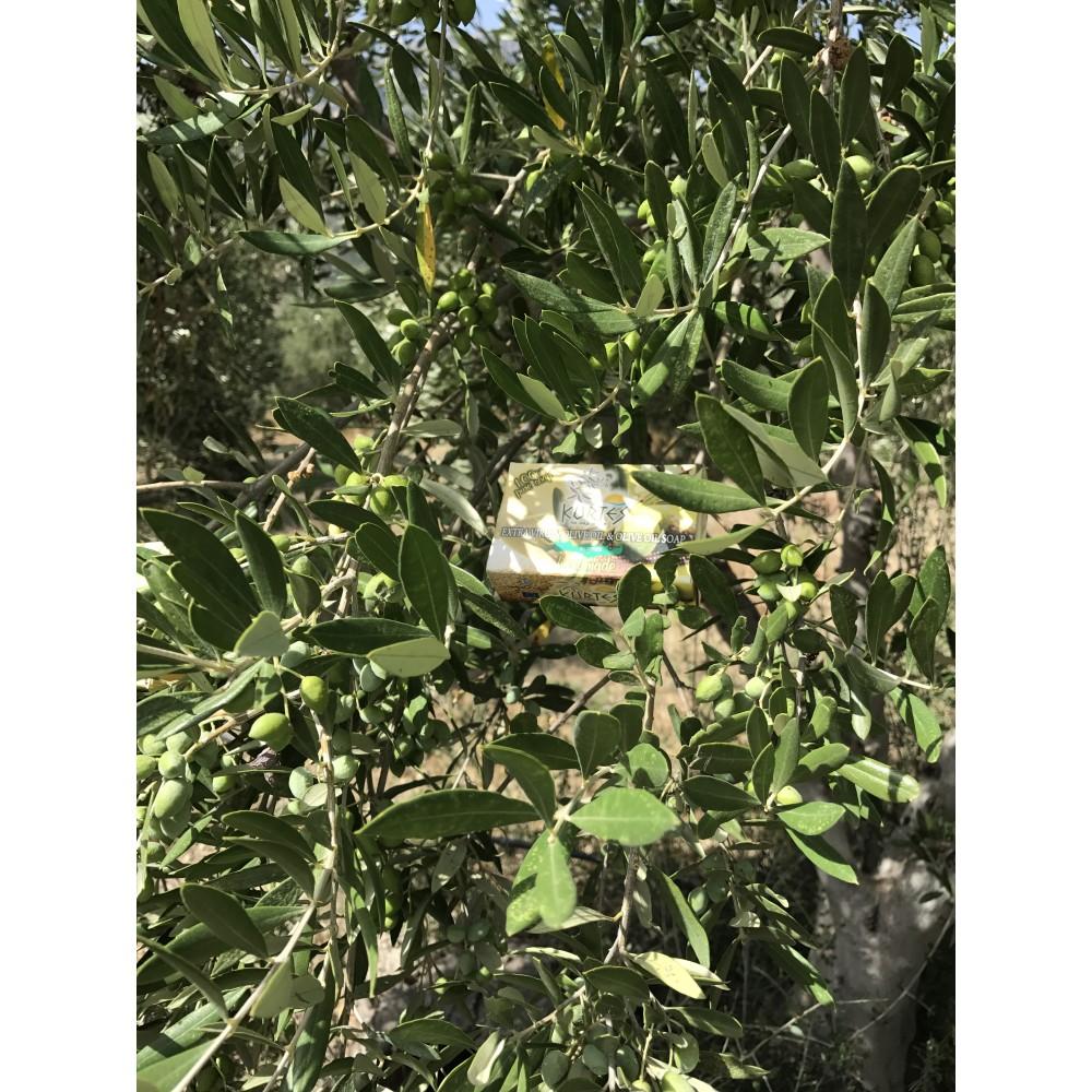 Оливковое мыло KURTES с ароматом жасмина - 90г. - доставка в Ваш город